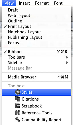 "Image demonstrates the location of ""Styles"" in"" view"" drop down menu."